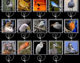 Bird Ornament - Bird Christmas Ornament - Bird Holiday Ornament Handmade (BDO1)