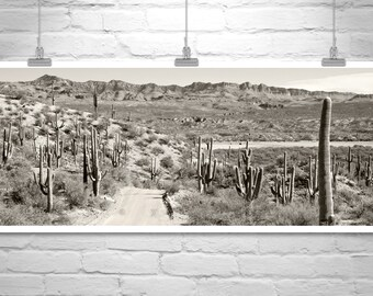 Desert Photo, Black and White, Saguaro Cactus Art, Tucson, Desert Art, Landscape Art, Country Roads, Road Trip, Back Roads, Panoramic Art
