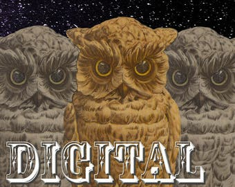 Owls in Space with Shell - Digital Download - Instant Print, Art, Nature, Skulls, Triple Moon