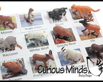 Montessori North American Wildlife Animal Match - Miniature Animals with Matching Cards - language materials -