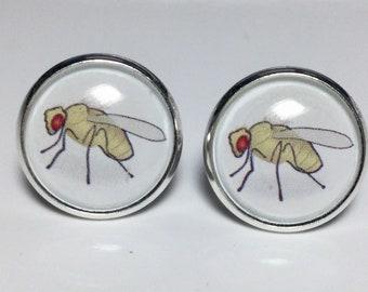 Scientist Drosophila Fruit Flies Earrings Science Astronomy Physics Earrings