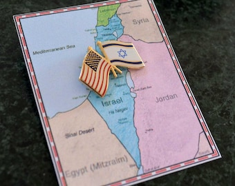 Israel and US Flag Pin / Tie Tack / Lapel Pin / Friendship Flag Pin