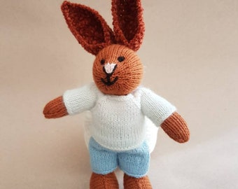 Teeny Boy Bunny in White Sweater and Pale Blue Shorts