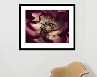Framed wall art, large floral photography, flower artwork floral framed art print, mint burgundy wall art picture, bedroom living room decor