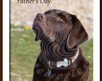 Happy Father's Day  (From Dog)