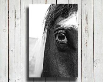 Horse eye - black and white horse photo - horse decor - horse art - black and white decor - western decor - modern decor - horse photography