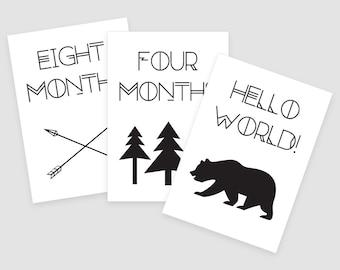 Adventure Printable Baby Monthly Milestone Cards 5x7- Instant Download - print yourself - Baby Boy, Baby Milestones, Baby Keepsakes