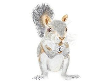 Woodland Animal Print, Squirrel Watercolor, Large Print, Woodland Watercolor, Squirrel Painting, Large Animal Print, Woodland Critter