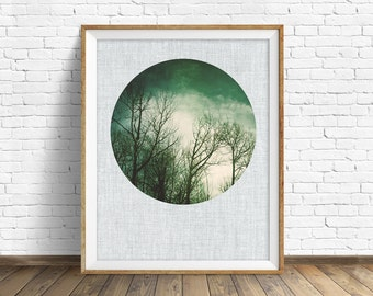 """nature photography, large art, large wall art, printable art, instant download printable art, nature prints, rustic wall art - """"Leafless"""""""