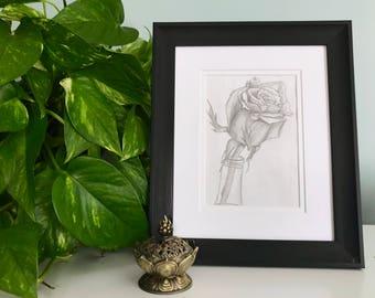 Rose  - Day 1 - Original Pencil Drawing