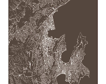 Wellington NZ Cityscape Art Print / New Zealand City Map Wall Art / 8x10 / Choose your Color