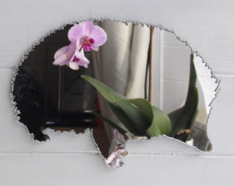Cute Hedgehog Acrylic Mirror
