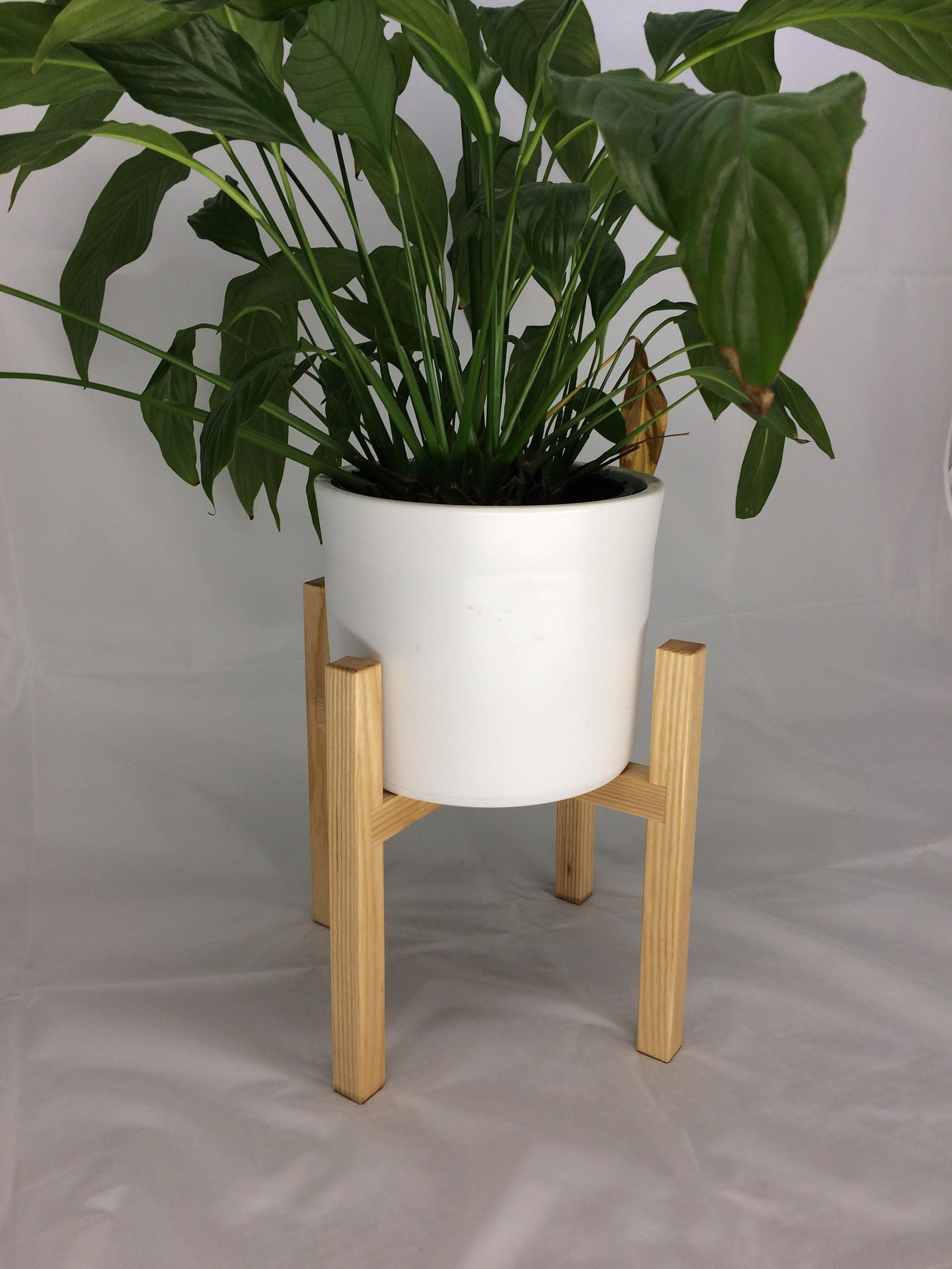 Handmade Ash Plant Stands