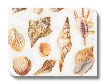 Shell paper napkin for decoupage x 1 Nautical paper napkin.  Cream Shells. No 1288