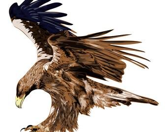 Golden Eagle, Stylized art,  Graphic Design, Abstract Painting, Original Art, t shirt design, Stylized illustration/ website design element