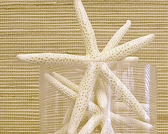 "Beach Decor - 2 Large Natural Starfish - 6""-7"" - coastal nautical wedding decor star fish"