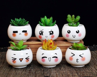 Cute Facial Expression Planters/Succulent Pot/Plant Pot/Home Decor/Pot/Planter