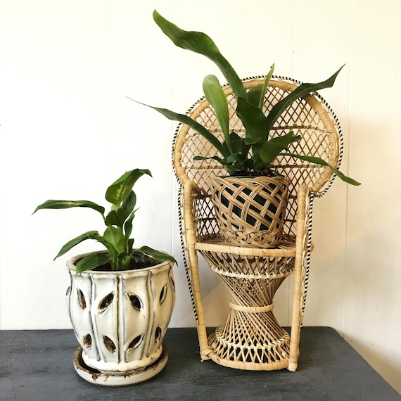 wicker mini peacock chair - woven rattan doll chair - plant pot stand - boho plant display