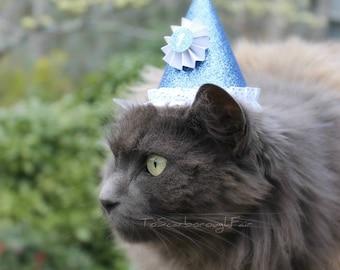 Anniversaire chat chapeau - célébration pour animaux de compagnie