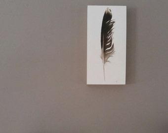 Original Feather Art, original watercolor painting, seagull, boho decor, home decor, modern design, nature art, beach decor