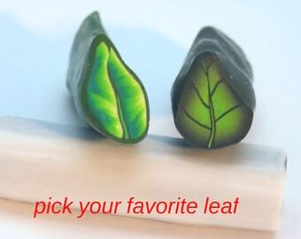 Pick your favorite leaf cane!