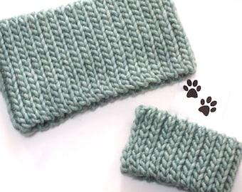 Dog Scarf Neck Warmer Cowl Pet Neckwarmer Seafoam Green Mint Dog Collar Pet Dog Clothes Cat Puppy Accessories Winter Cowl Crochet Scarf Cozy