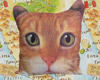 Orange Tabby cat, pillow cover, pillow case, cushion cover, cat, pillow case, cat portrait pillow cover, pet pillow cover, gift, CU-112