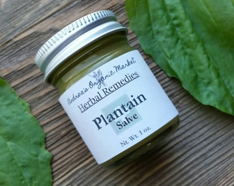 Organic Plantain Salve, Antibacterial Cream, Cut and Scrape Salve, Organic Plantain Balm, Wound Salve, Herbal Salve, Antibacterial Salve