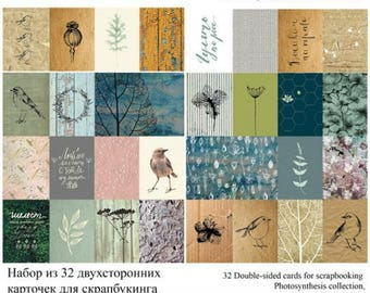 Set of 32 labels for photosynthesis collection