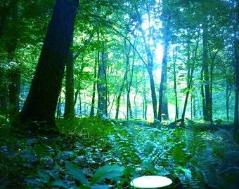 Fairy Dwelling print, mushroom, enchanted forest, fairy ring