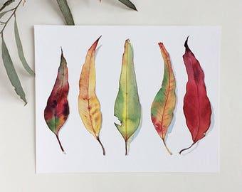 "Gum leaf watercolour print A4 or 8""x10""; eucalyptus leaves botanical illustration; colourful wall art horizontal print; autumn nature decor"