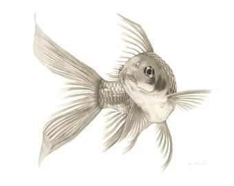 Fishy signed inkjet print