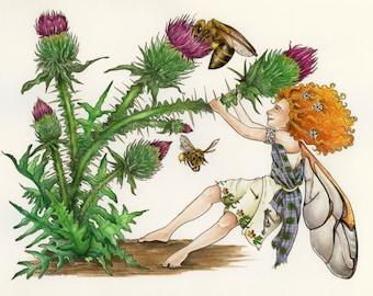Scottish Faerie / Scottish Fairy