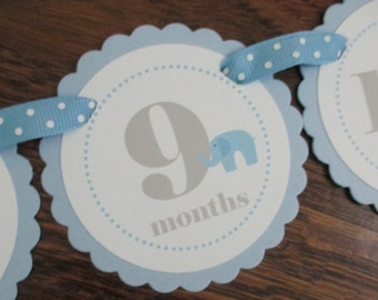Little Peanut BOY: Just Born/0-12 mos Picture Banner. First Birthday Banner. Light Blue. Elephant. Baby Blue. Male