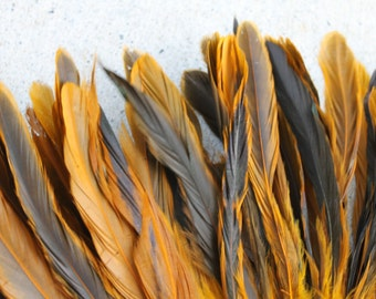 Coque feathers in Yellow/Gold/bronze color- length 8-10 inches yellow/bronze-rooster feathers, Tahitian costume supply