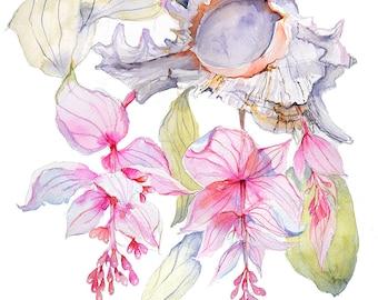 Pink Flower Watercolor Print Wall Art Floral Watercolor Medinilla Watercolour Art Surreal Art Floral Print Wall Decor Floral Art Seashell