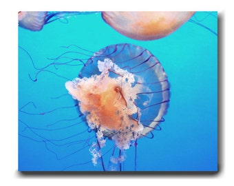 Jellyfish art, large wall art, ocean underwater canvas wrap aqua blue peach turquoise wall art, beach bathroom wall decor, kids room artwork