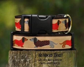 Dachshund Tan ribbon dog collars Medium to X-Large