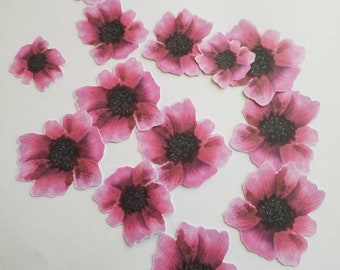 Scrapbooking Pink poppy cut outs.