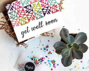 Mini Get Well Soon Gift Box - Get Well Gift   Get Well Card   Succulent Gift   Thinking of you Gift
