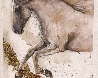 Andalusian horse original gilded pen and watercolour painting