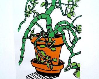 """Jade Succulent Plant 8.5"""" x 11"""" Print / Letter Size"""