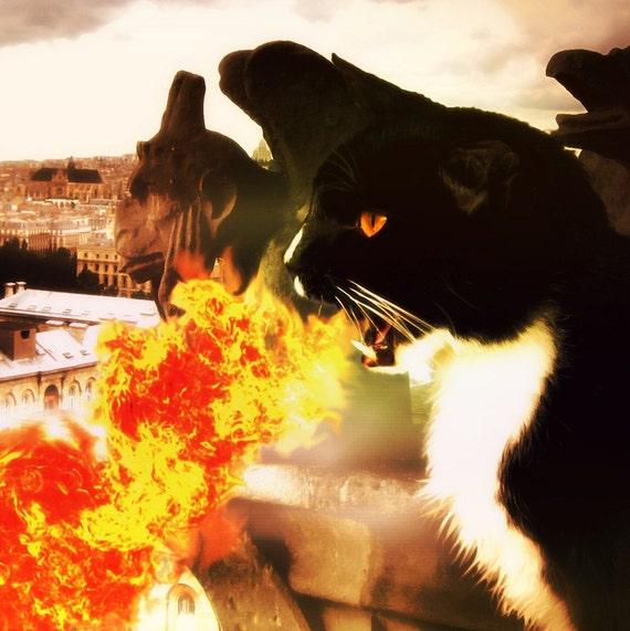 Dragon Cat Breathing Fire, Gargoyles 5x7 Fine Art Print CLEARANCE
