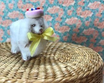 Fluffy Lap Dog Pekingese miniature