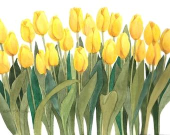 Yellow Tulips Reproduction of an Original Watercolor by Wanda Zuchowski-Schick