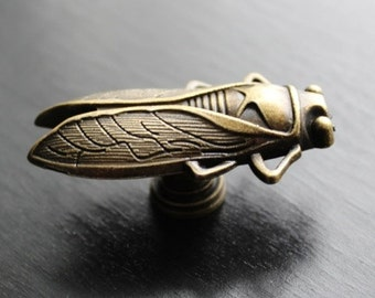 Insect drawer knobs - cabinet knobs (cicada) in Brass Metal (MK111B)