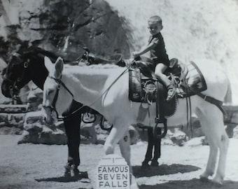 Little Boy on Pack Burro Famous Seven Falls Colorado Springs Vintage Photo