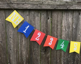 12 month photo banner. 1st birthday photo banner, first year banner, boy birthday banner. Primary colors 1st Birthday .