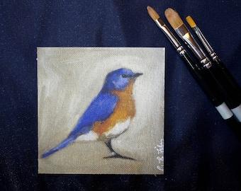 "Glicee Print of Original Oil Painting of Eastern Bluebird || 4""x4"" || Fine Art Print, Bird Painting"