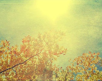 Landscape Photography,  Red, Gold Wall Decor, Autumn Print, Fine Art Print, Rustic Decor, Nature Photography